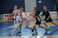 Floorball in Welbergen vorgestellt